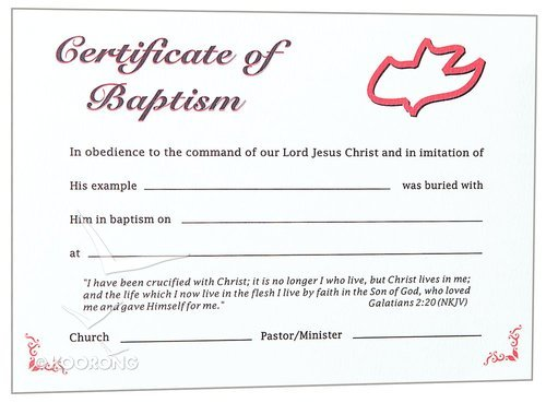 CERTIFICATE ADULT BAPTISM RED DOVE