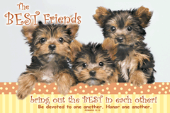 POSTER : BEST FRIENDS