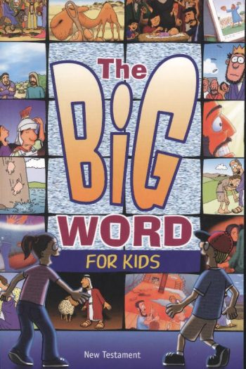 CEV BIG WORD FOR KIDS, THE NEW TEST.