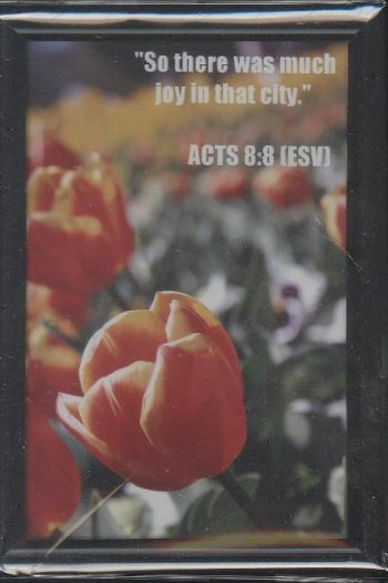 ACTS8GLASS