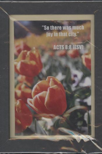 ACTS8WOOD