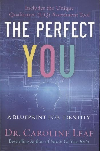 PERFECT YOU, THE