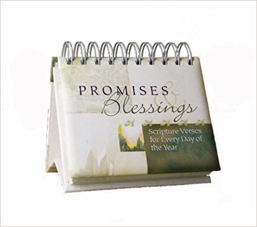 DAY BRIGHTENER:PROMISES AND BLESSINGS