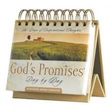 DAYBRIGHTENER: GOD'S PROMISES