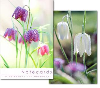 NOTECARDS:FLOWERS (NO SCRIPTURE)