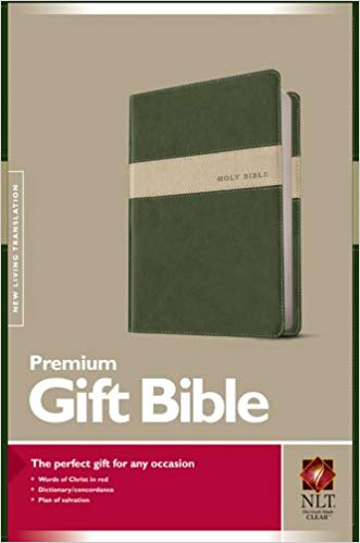 NLT PREMIUM GIFT BIBLE GREEN/STONE