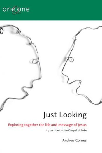 ONE 2 ONE BOOK 3: JUST LOOKING