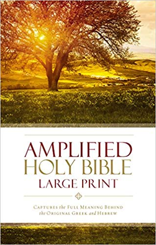 AMPLIFIED HOLY BIBLE L/PRINT H/COVER