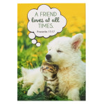 NOTEPAD: A FRIEND LOVES AT ALL TIMES