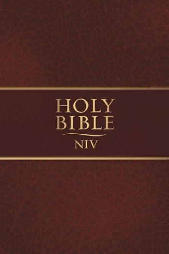 NIV HOLY THINLINE BIBLE BROWN