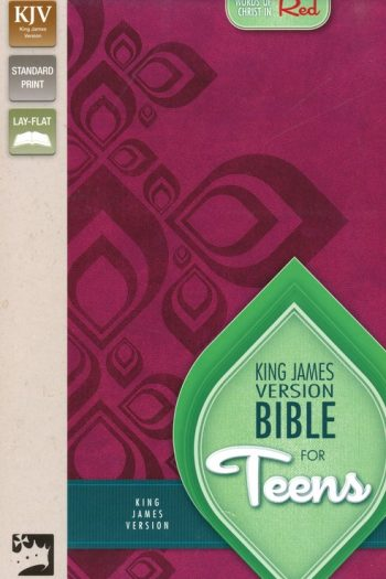 KJV BIBLE FOR TEENS RAZZLEBERRY