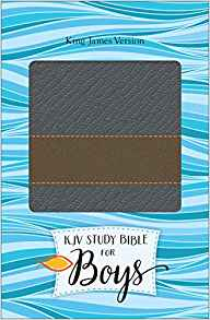 KJV STUDY BIBLE FOR BOYS:GRANITE/COPPER
