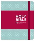 NIV JOURNALLING BIBLE MINT POLKA DOT